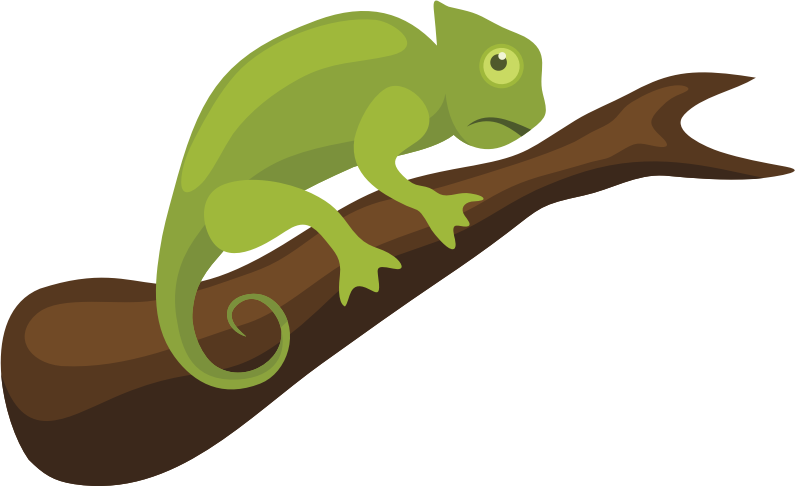 Chameleon clipart iguana. At getdrawings com free