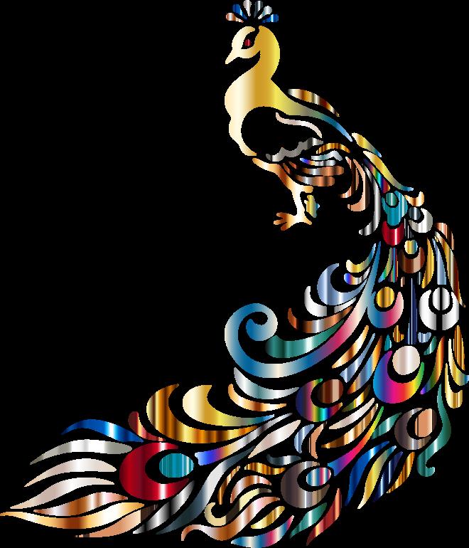 Chromatic no background medium. Design clipart peacock