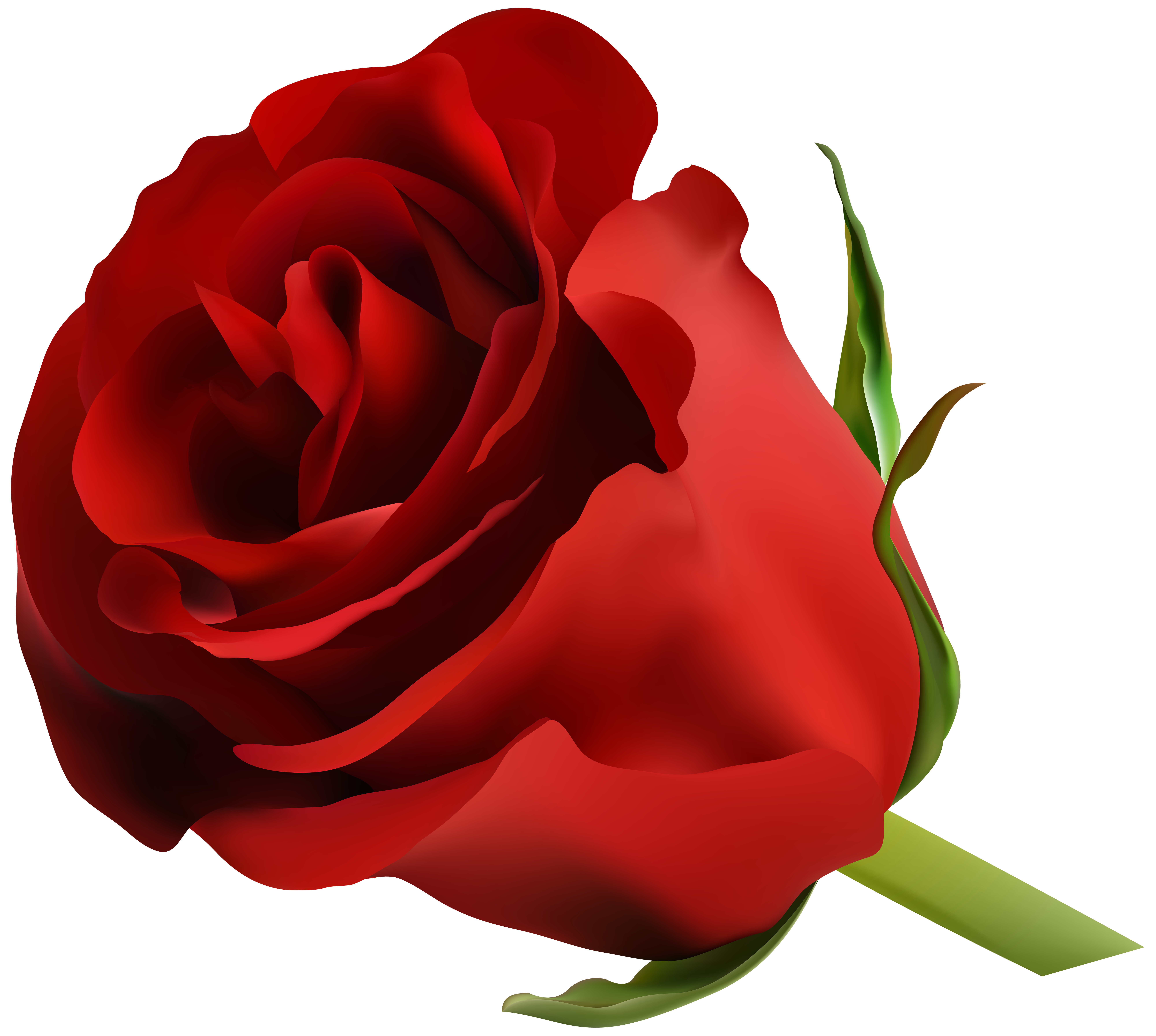 Rose clipart stick. Red png clip art