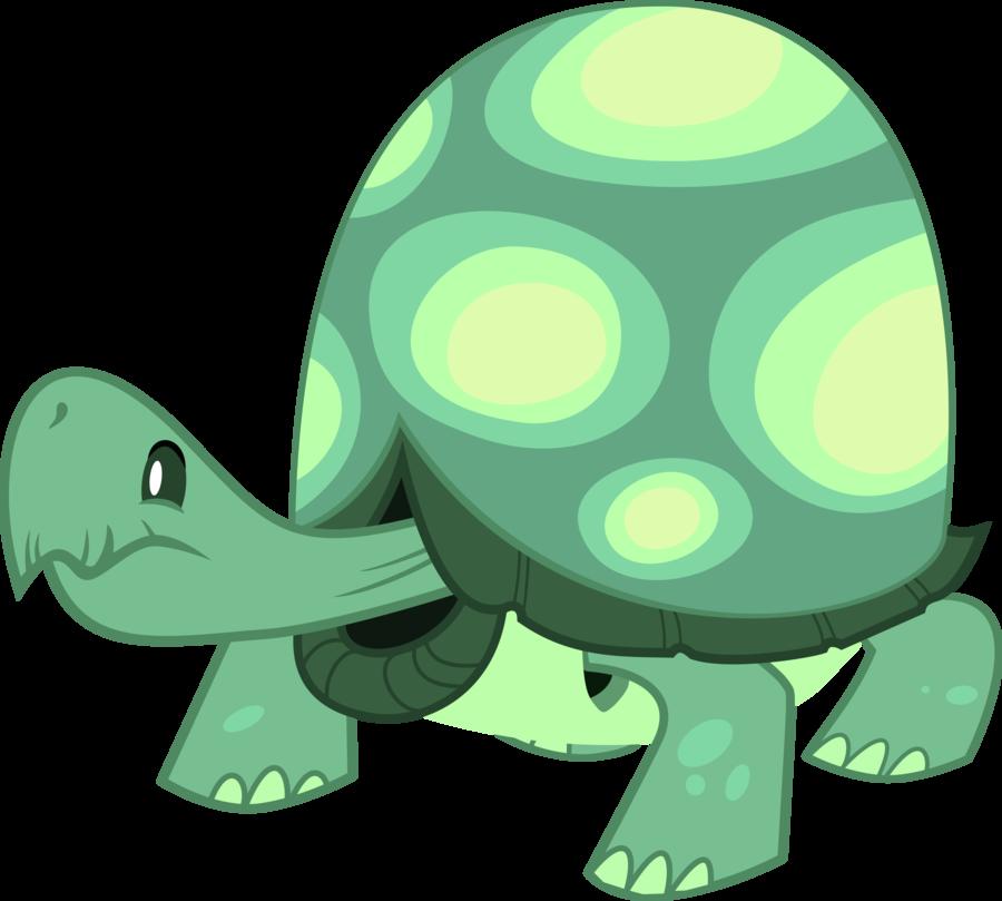 Pet clipart pet turtle. Tanque mascota de rainbow