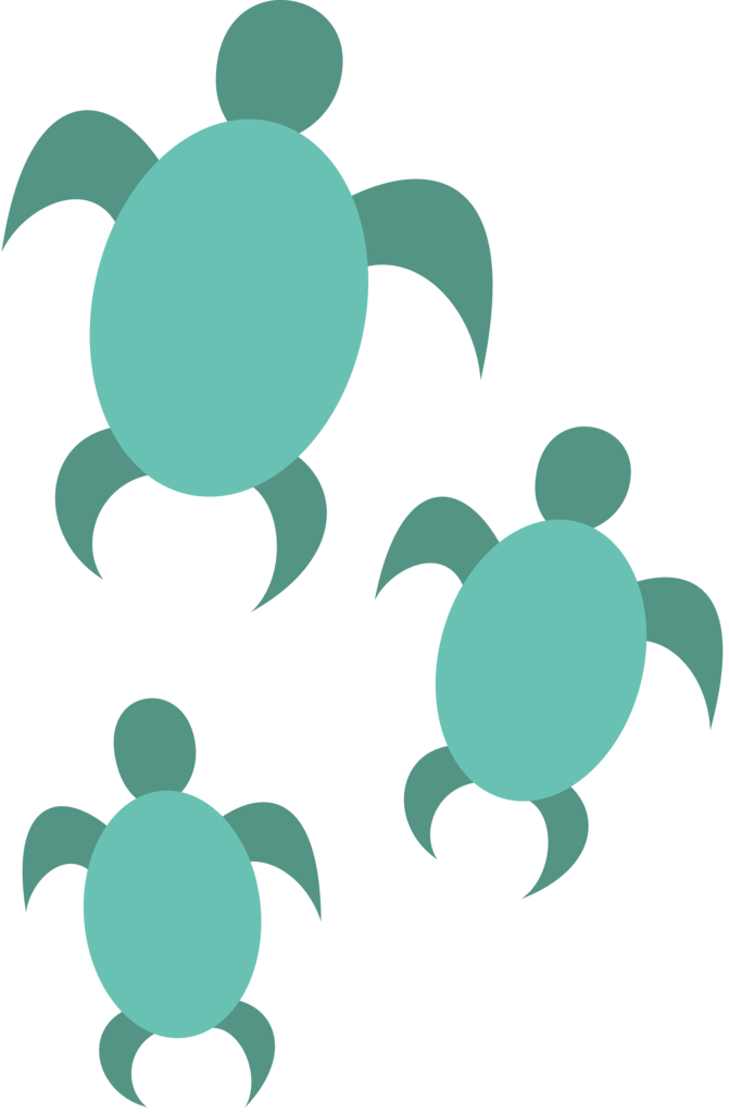 Clipart turtle transparent background.  absurd res ai
