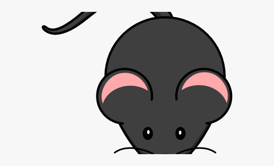 Clipart rat artistic. No background cliparts