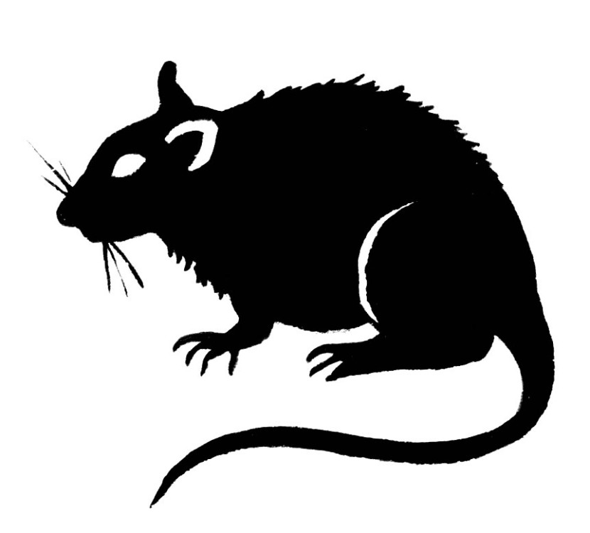 Clipart rat artistic. Evil cliparts free download