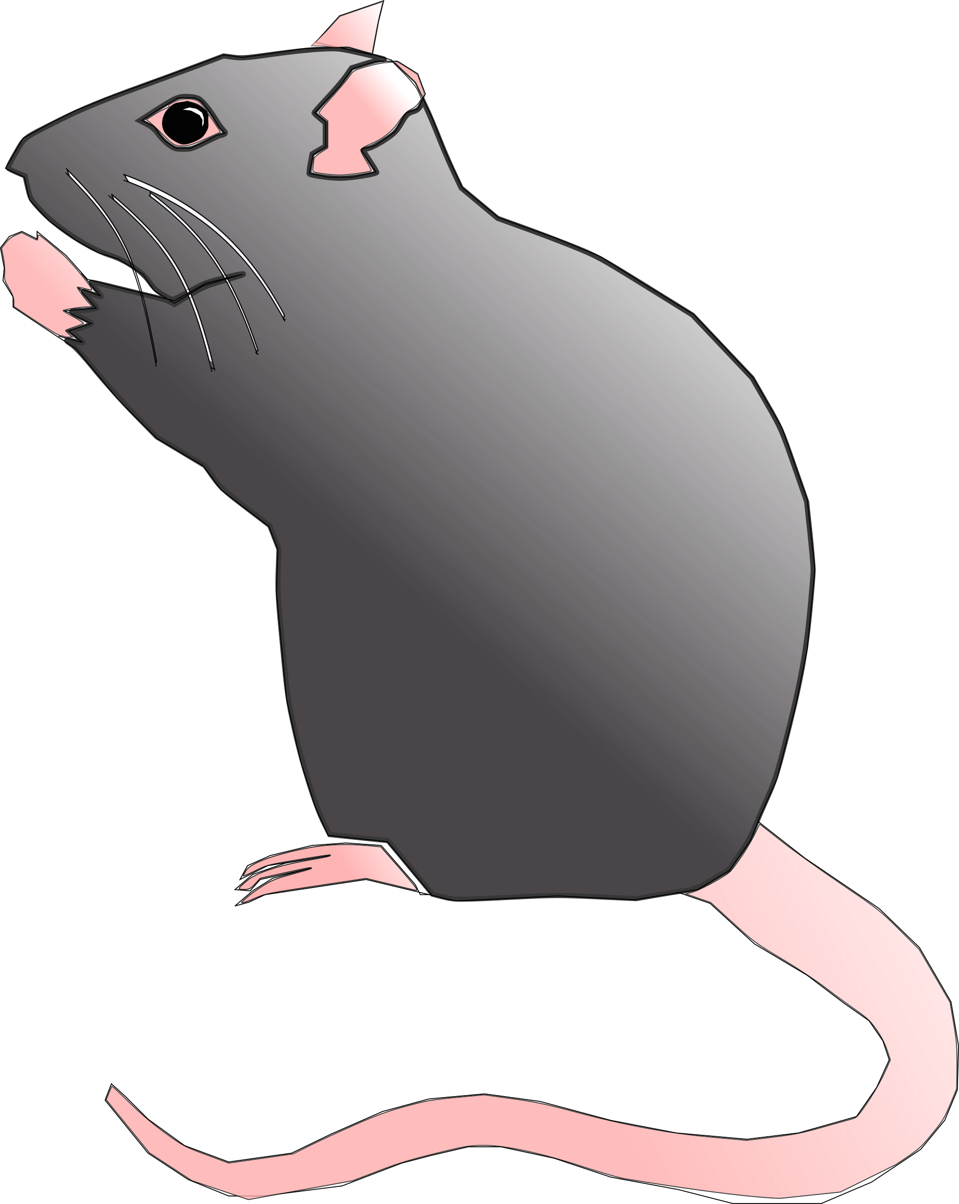 Ratx image png. Rat clipart big rat