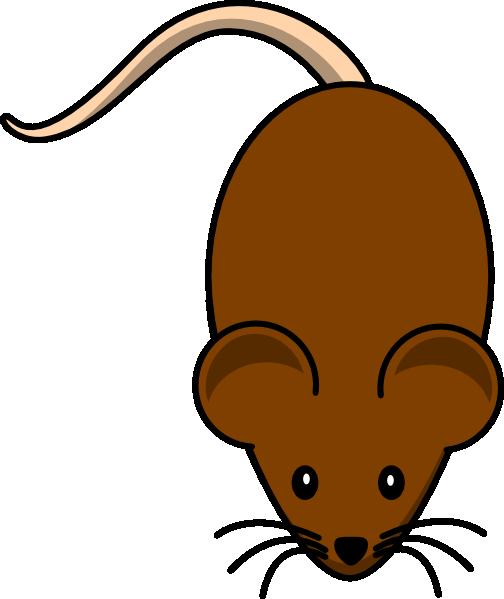 Clipart rat brown colour. Free download clip art