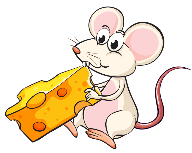 Mouse eating clip art. Clipart rat cheese