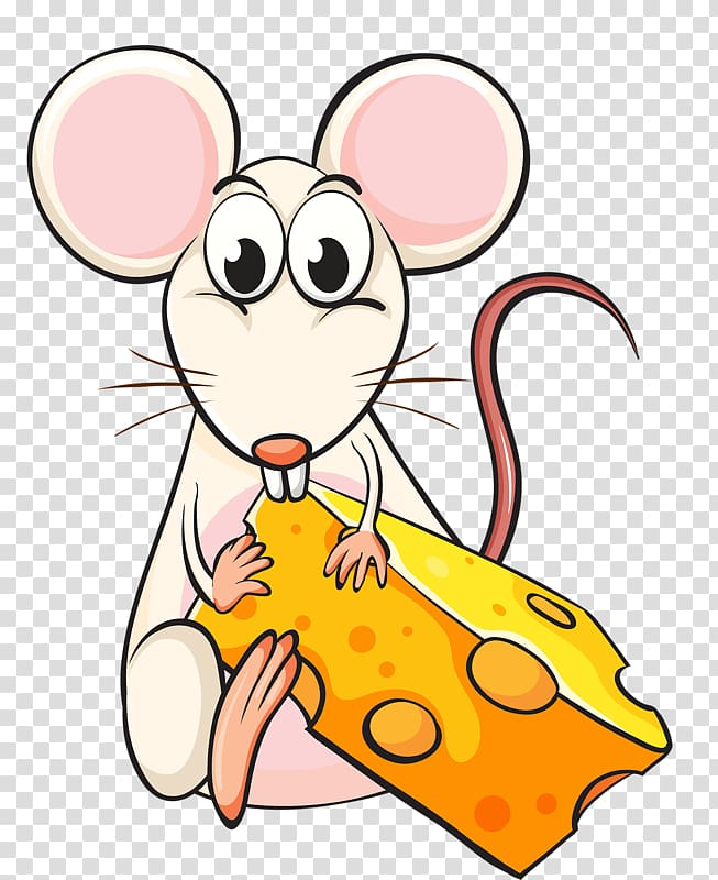 Rat clipart animal eating. White mice cheese mouse