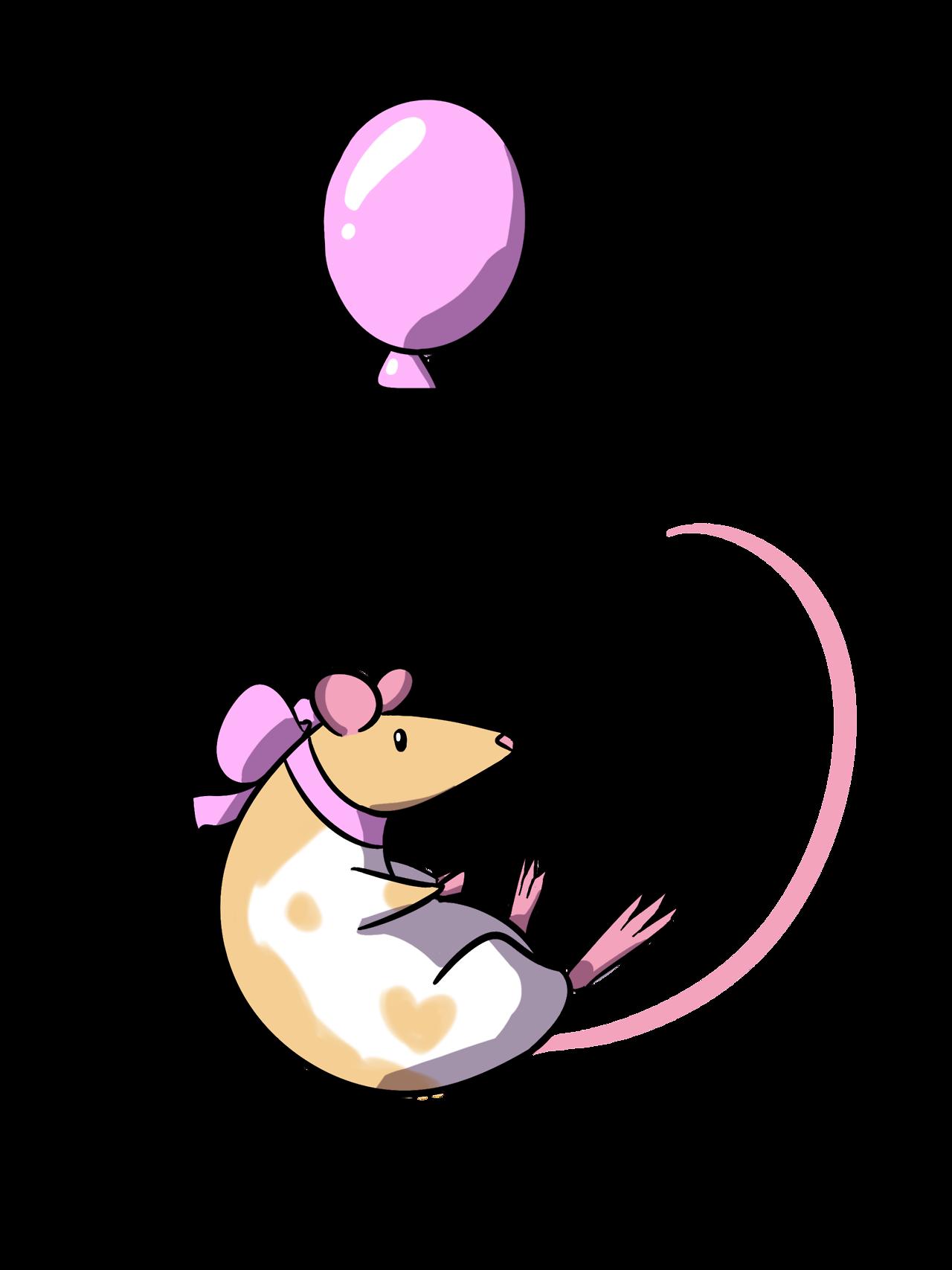 Rat cute rat