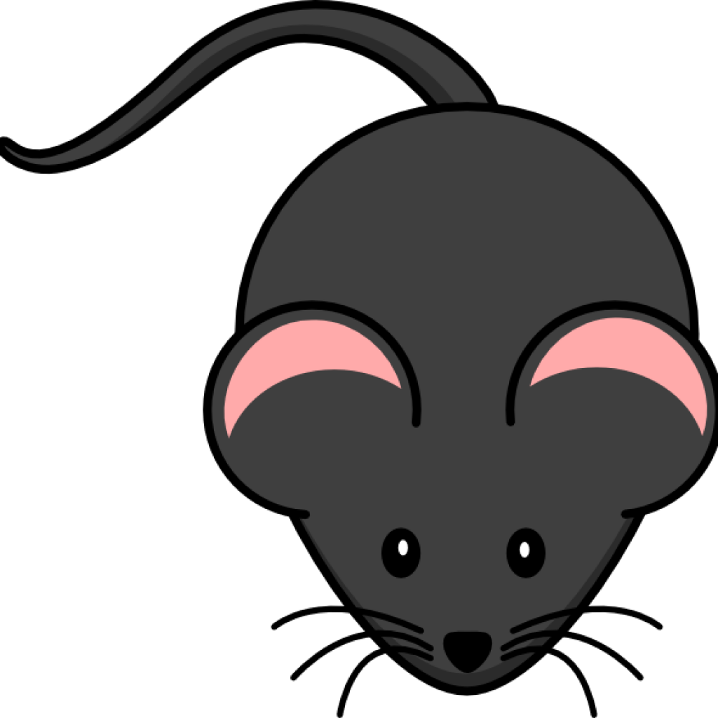 Clipart rat easy. Wave hatenylo com cute