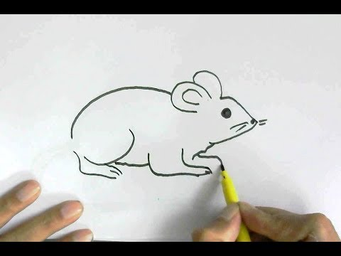 Clipart rat easy. How to draw or