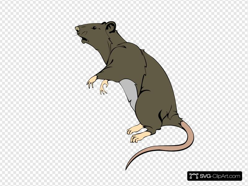Clipart rat greedy. Grey clip art icon
