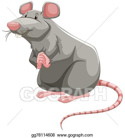 Clipart rat grey rat. Vector illustration eps gg