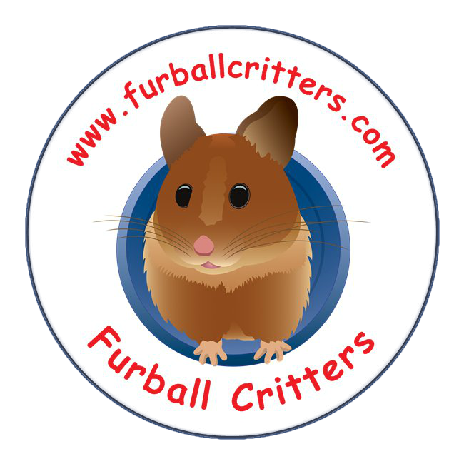 Furball critters hamsters rats. Hamster clipart wheel clipart