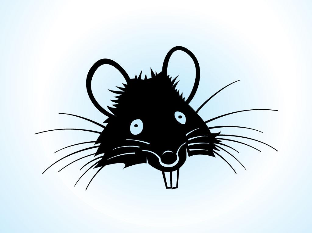 Clipart rat head cartoon. Free pictures download clip