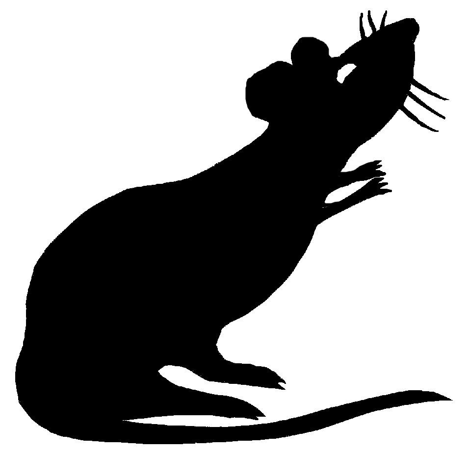 Line drawing free download. Clipart rat huge