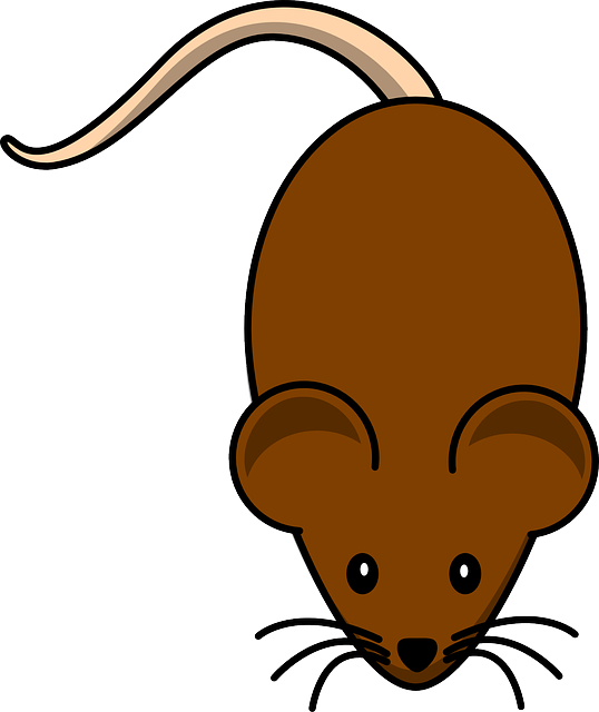 hamster clipart brown mouse