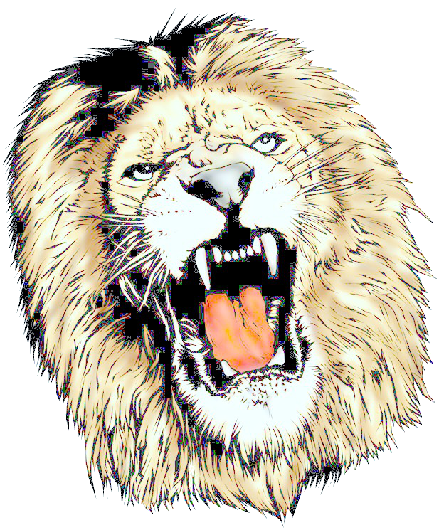 Fly clipart office. Png lion head download