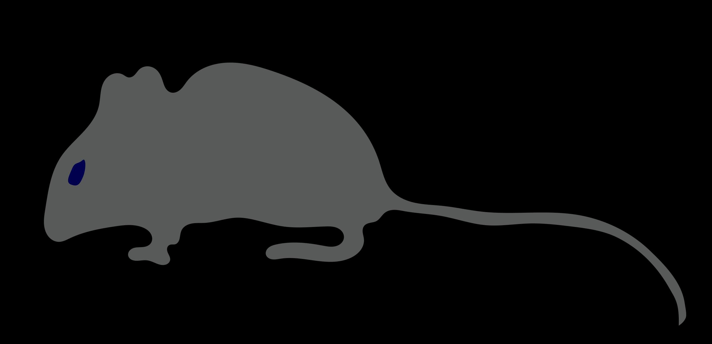 Silhouette tail clip art. Rat clipart little mouse