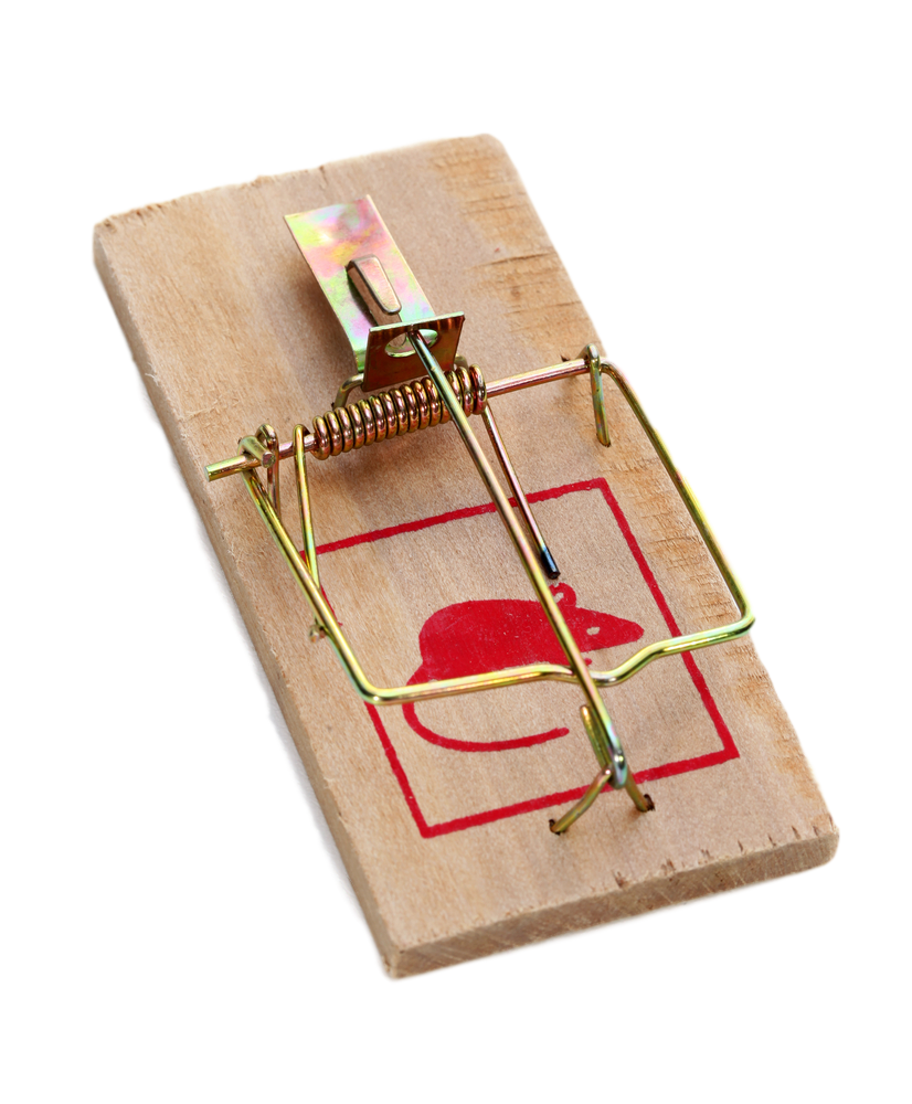 Png images free download. Clipart rat mouse trap game