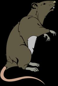 Rat clipart public domain. Grey greedy clip art