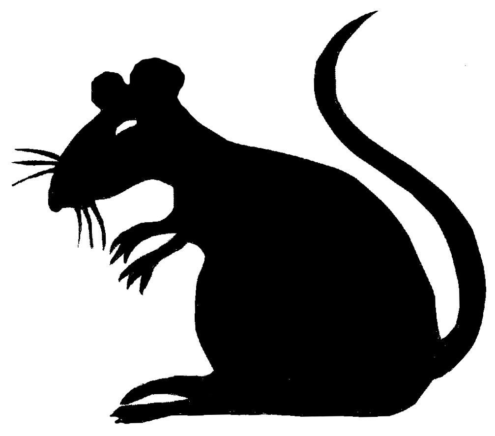 Creepy clip art library. Clipart rat rat tail