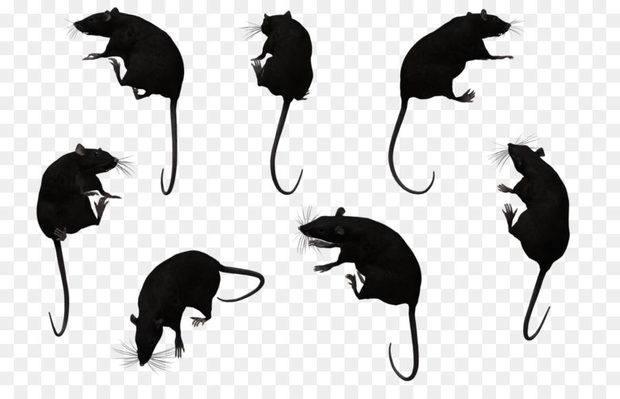 Cartoon mouse cat transparent. Clipart rat silhouette