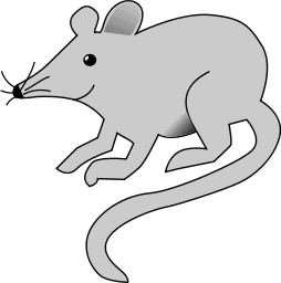 Free page of public. Clipart rat simple