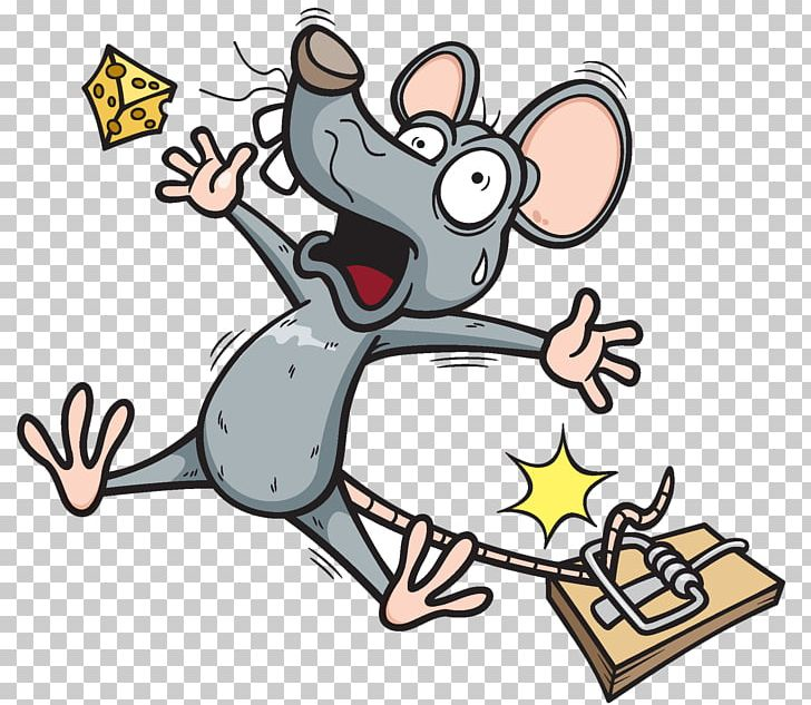 Mouse trapping png animal. Rat clipart trap