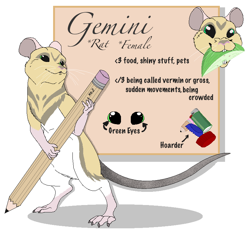 Rat clipart vermin. Gemini reference fursona by