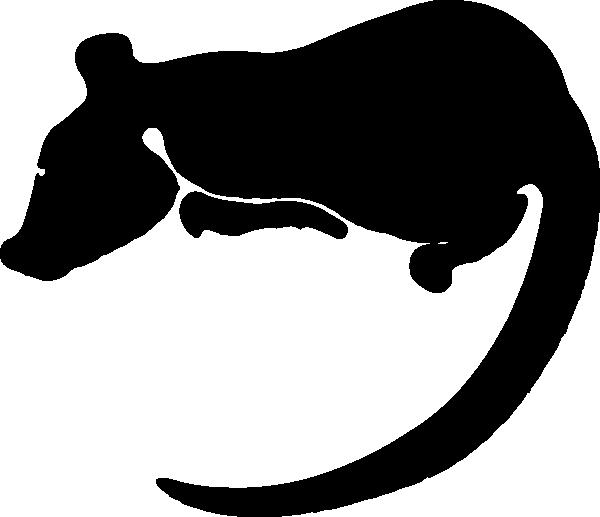 Rat zodiac