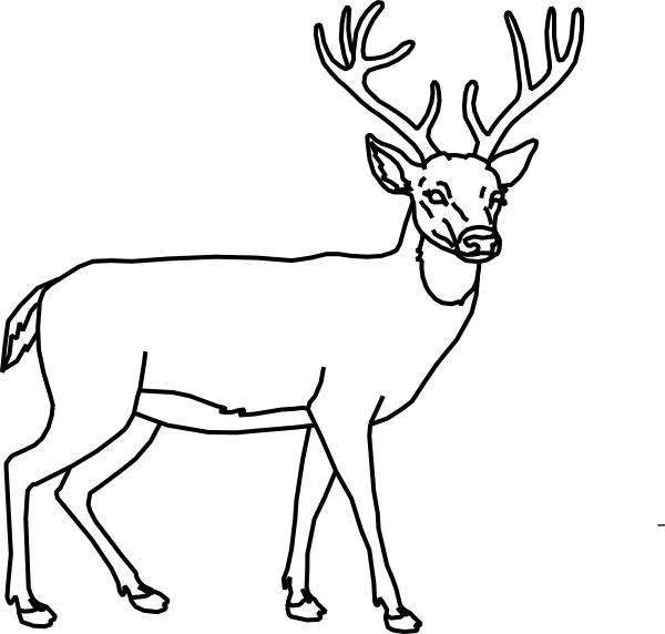 Deer outline clip art. Clipart reindeer black and white