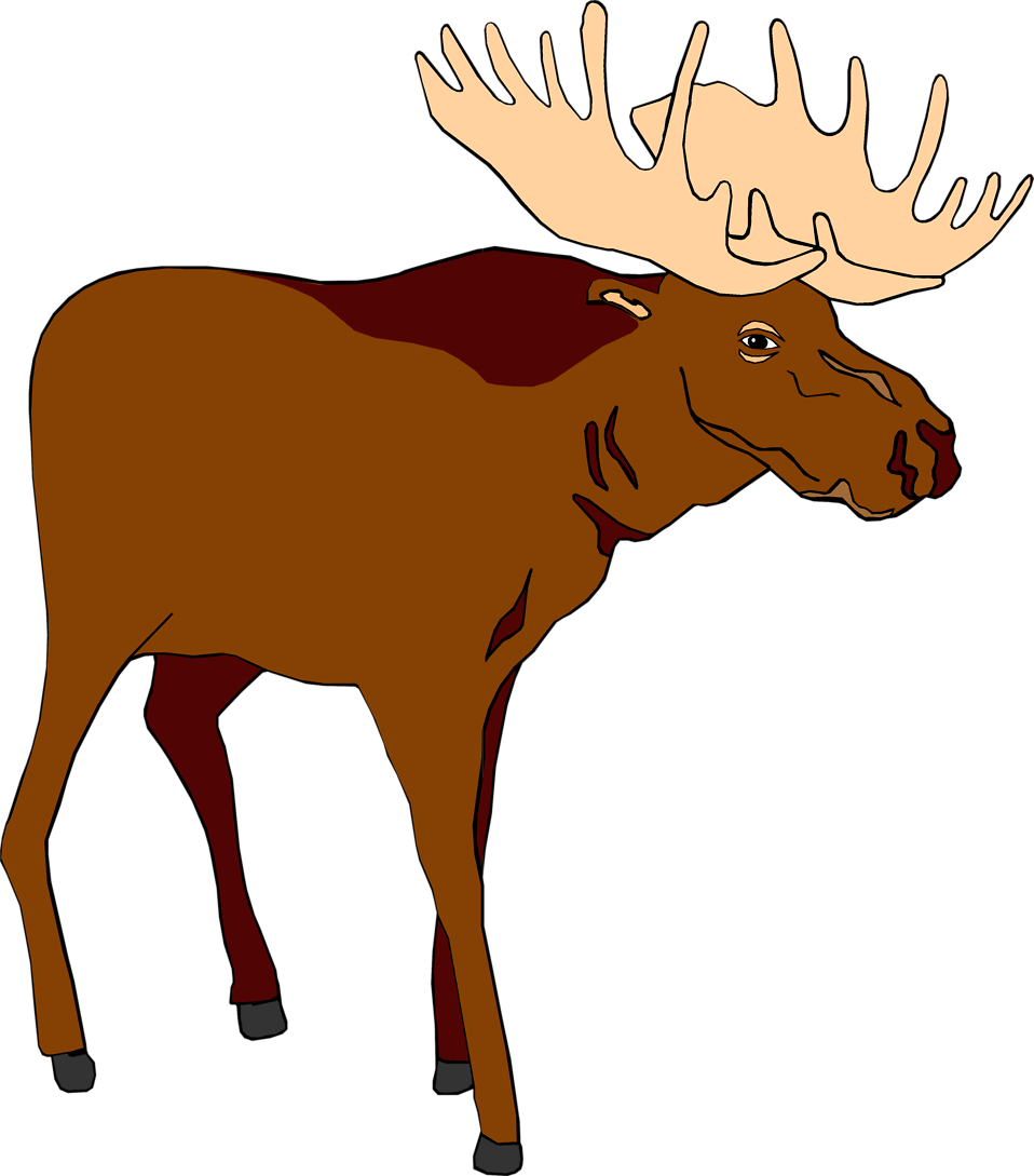 Image of free illustration. Moose clipart animal canada