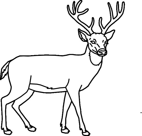 Outline clip art at. Deer clipart buck