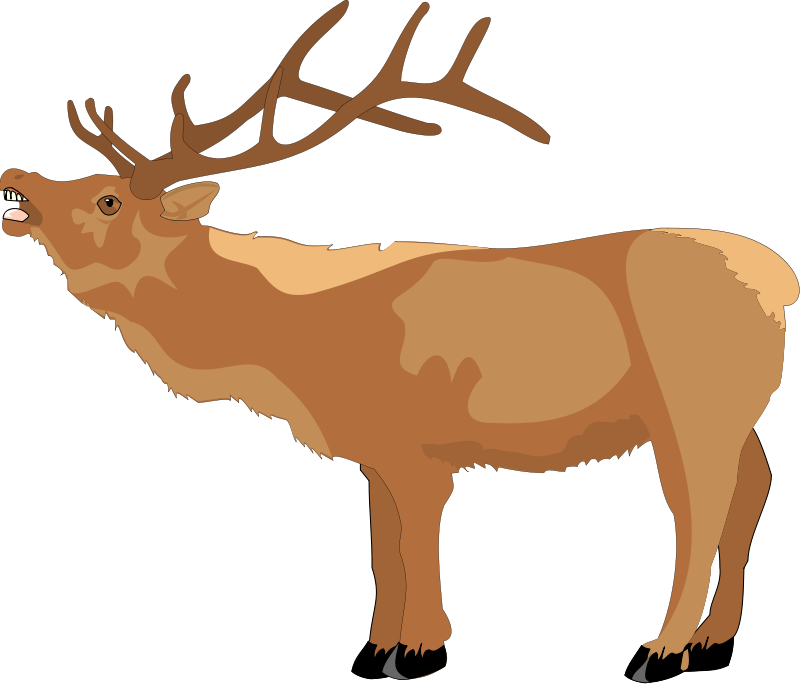 Clipart reindeer pretty. Side profile open mouth
