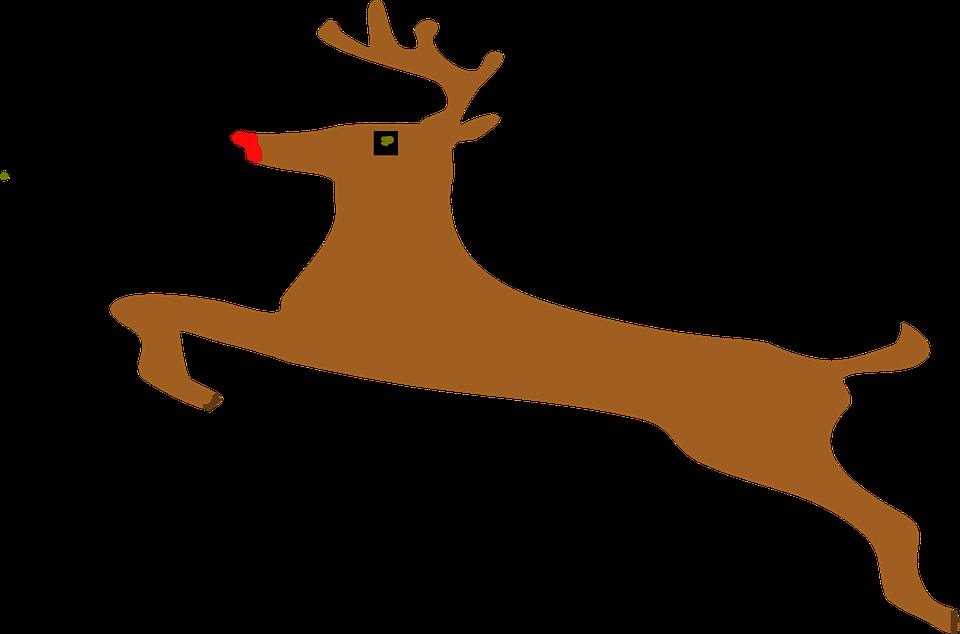 Reindeer reindeer race