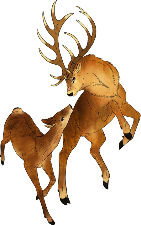 The red endless forest. Elk clipart angry