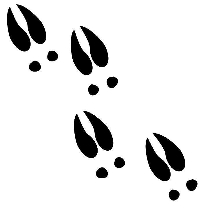 Moose clipart footprint. Free deer tracks cliparts