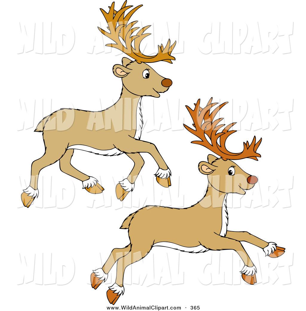 Clipart reindeer two. Clip art of beige