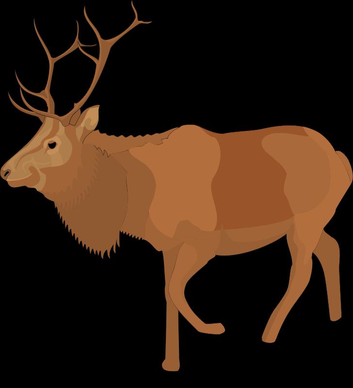 clipart reindeer vector