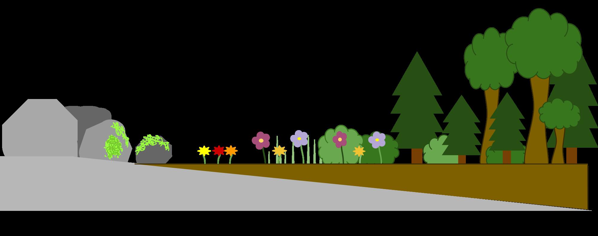 Clipart road timeline. File primary succession diagram