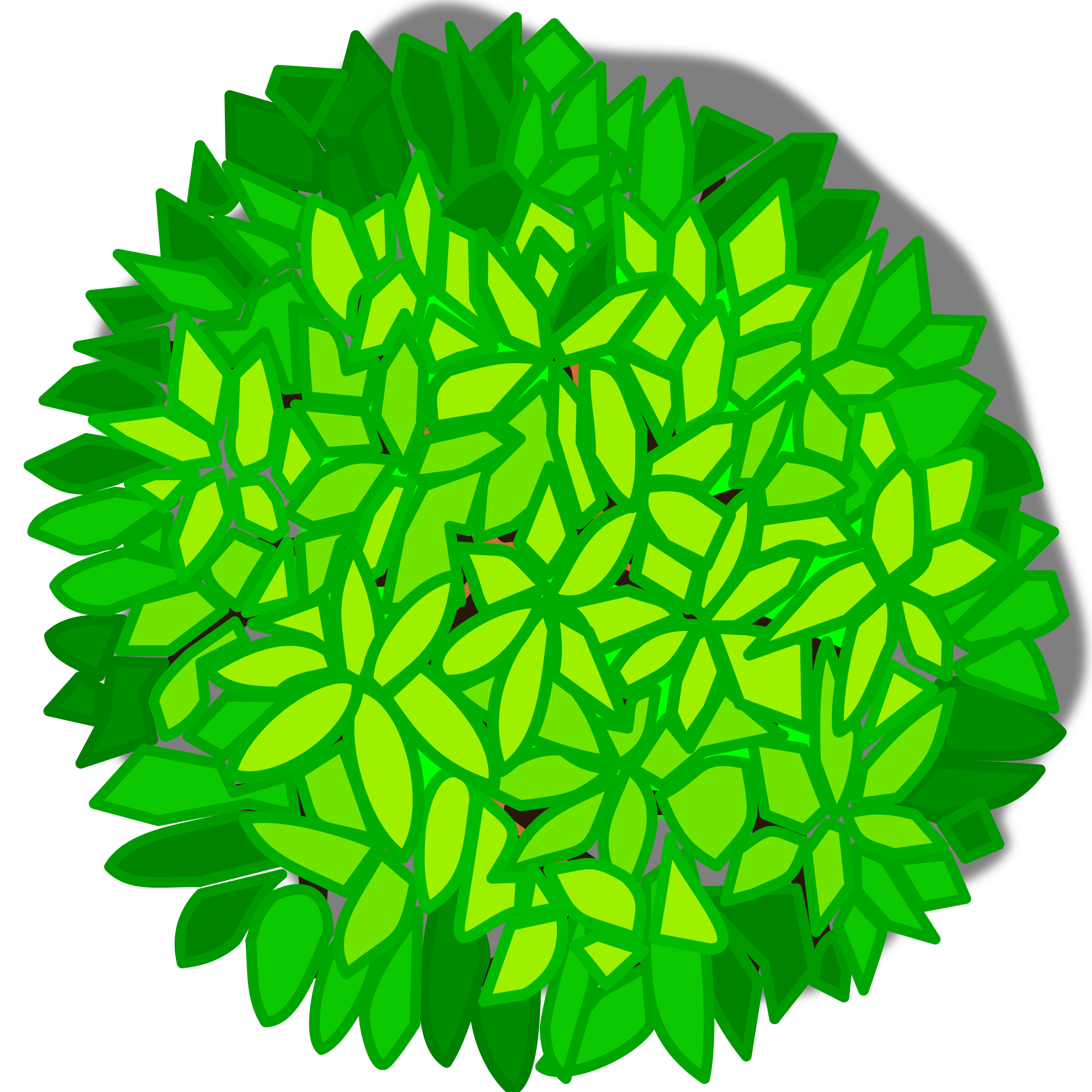 Kind clipart top view.  collection of trees