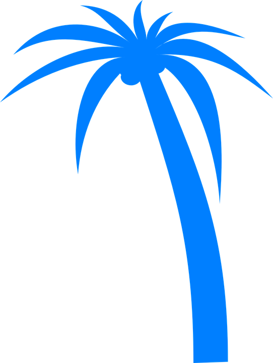 Vacation tropical tree pencil. Clipart road wavy