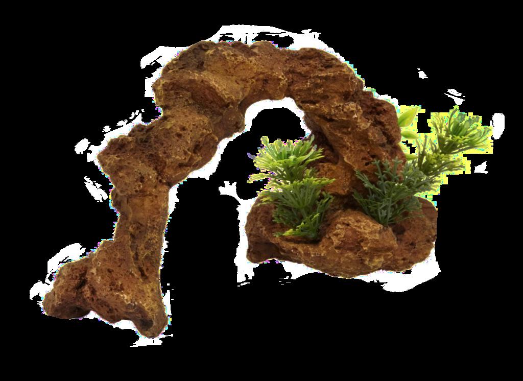 Clipart rock seaweed. Angels deviantart clip art