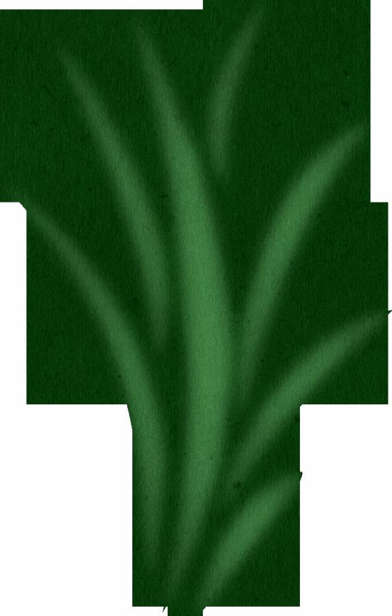 Panda free images seaweedclipart. Clipart rock seaweed