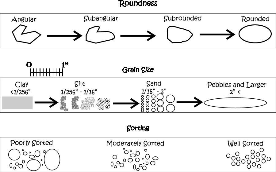 Dinojim com geology stage. Clipart rock sedimentary rock