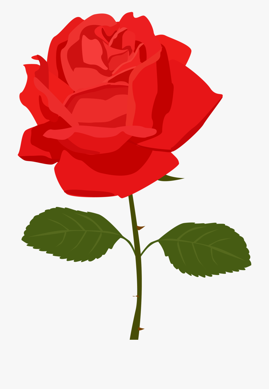 Clipart roses clear background. Dozen red re rose