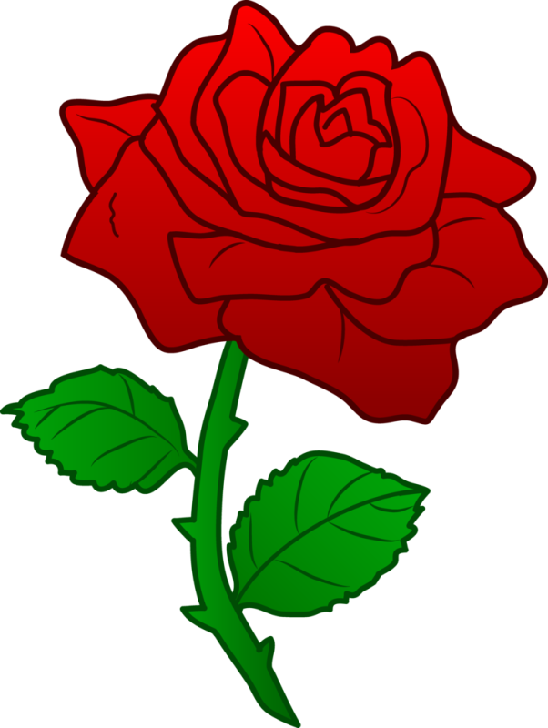 Rose clip art ourclipart. Clipart roses beauty and the beast