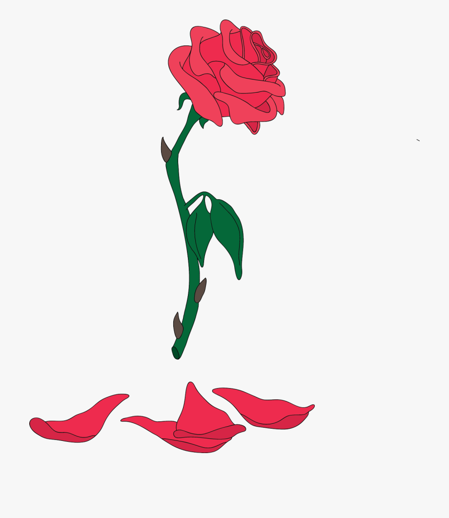 Clipart rose beauty and the beast. Png