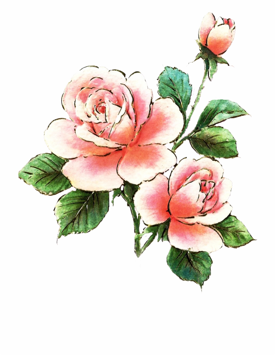 Clipart roses bed. Free clip art pink