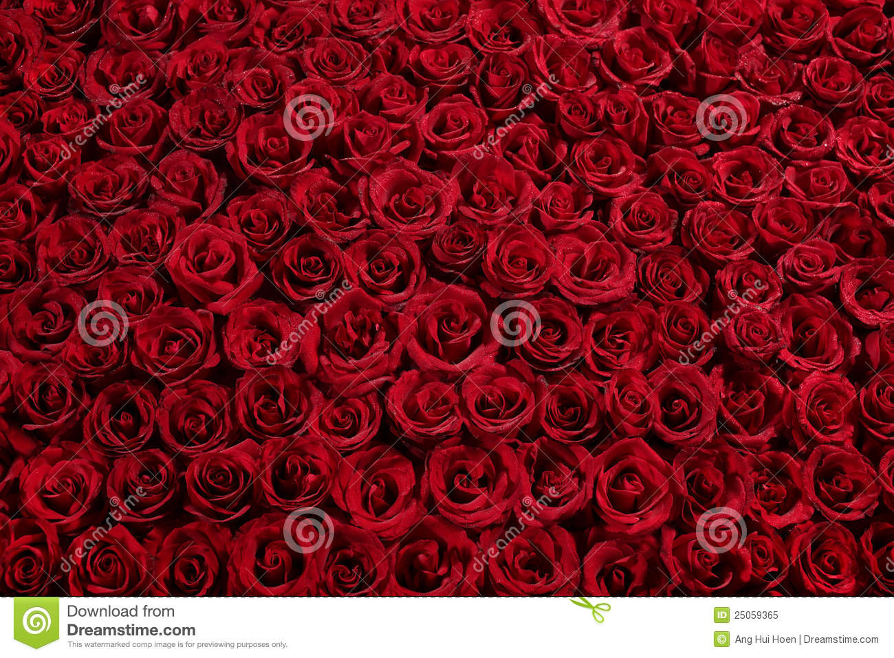 Of roses . Clipart rose bed